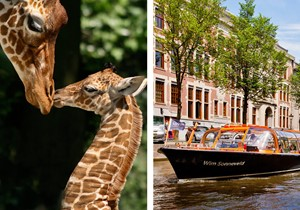 Artis + Amsterdam Canal Cruise