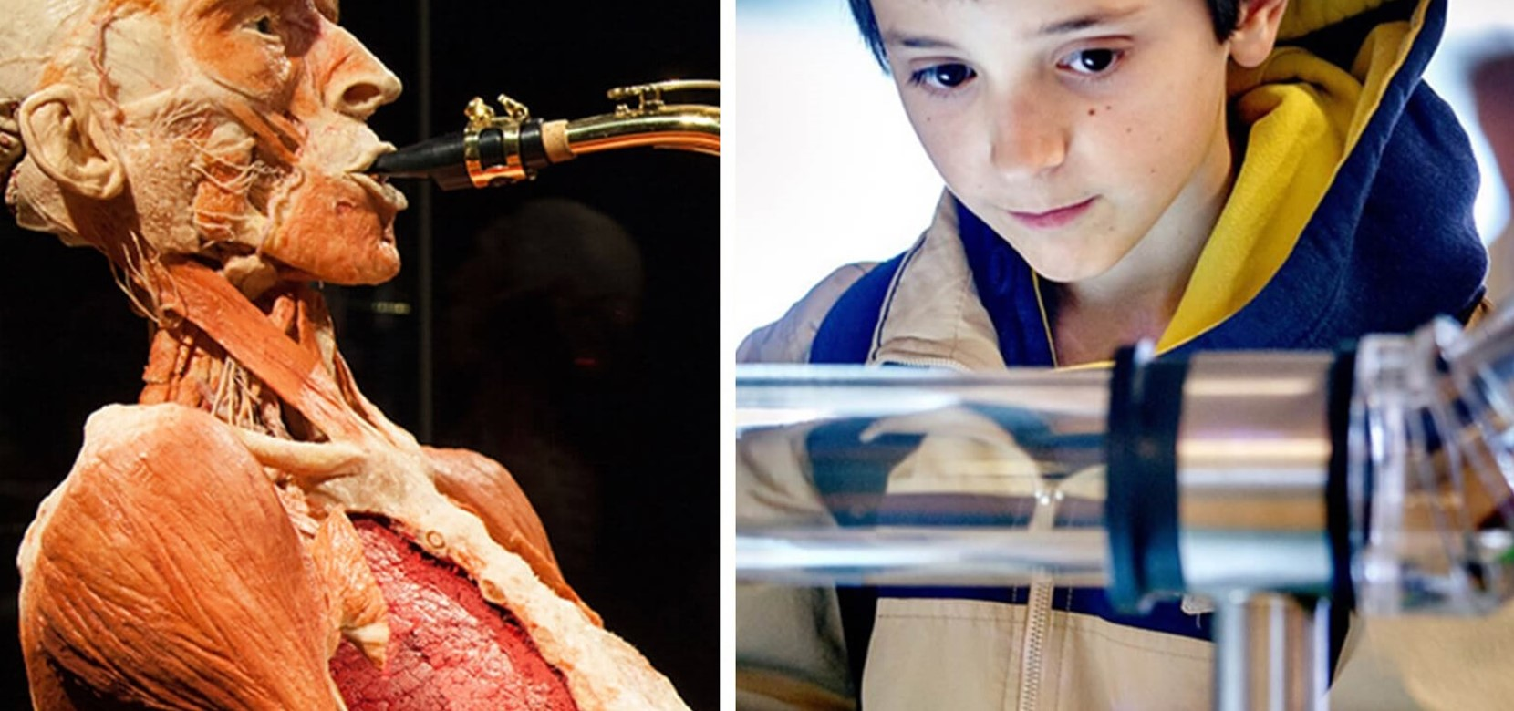 Nemo Science Museum + Body Worlds