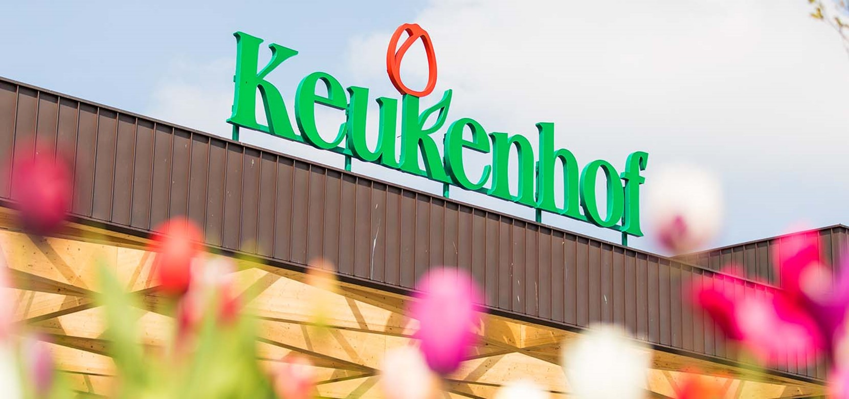 Keukenhof Direct Transfer + Fast Track Entrance