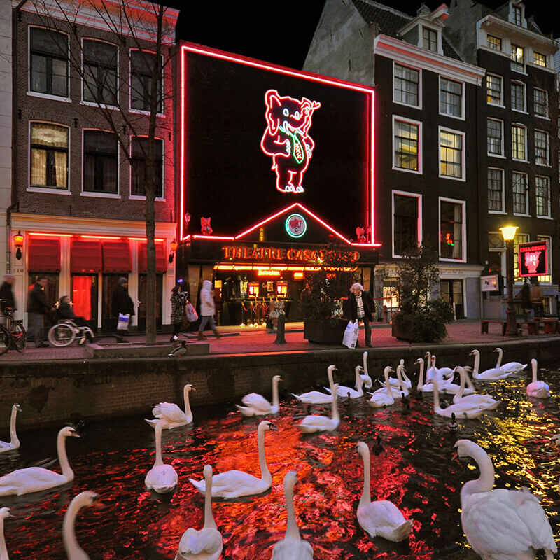 The outside of Casa Rosso Erotic theatre with a lot of swans in the canal in front of it.