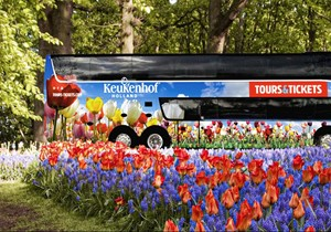 Keukenhof Direct Transfer + Skip the line Entrance