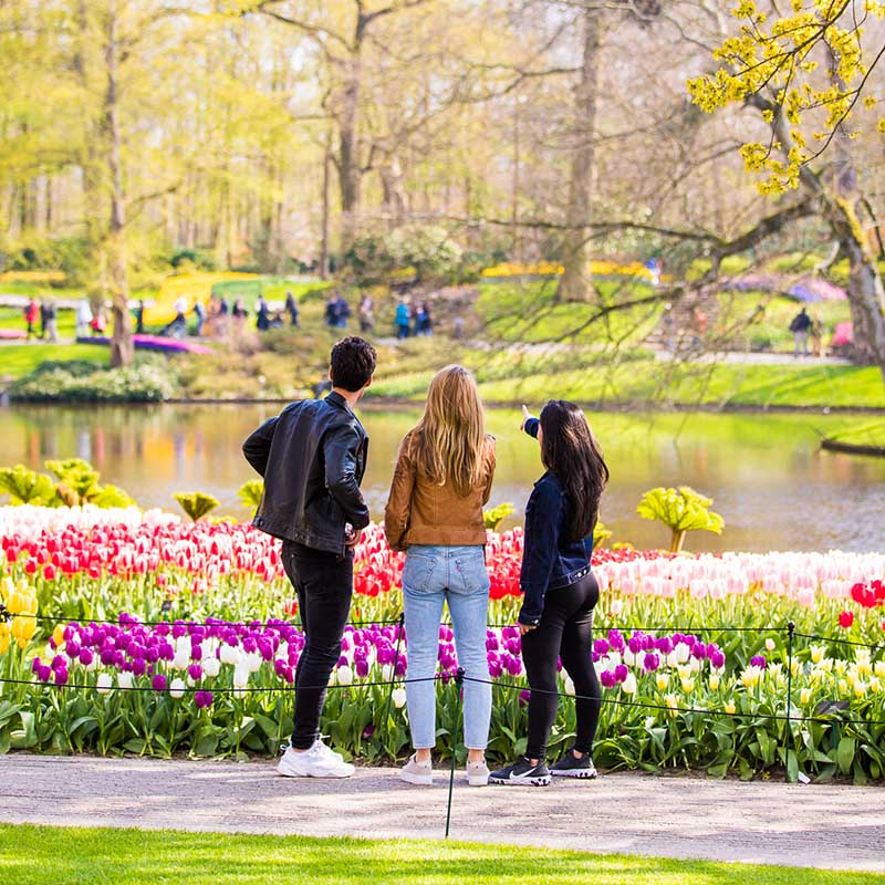 People talking in the Keukenhof park with tulips and trees.