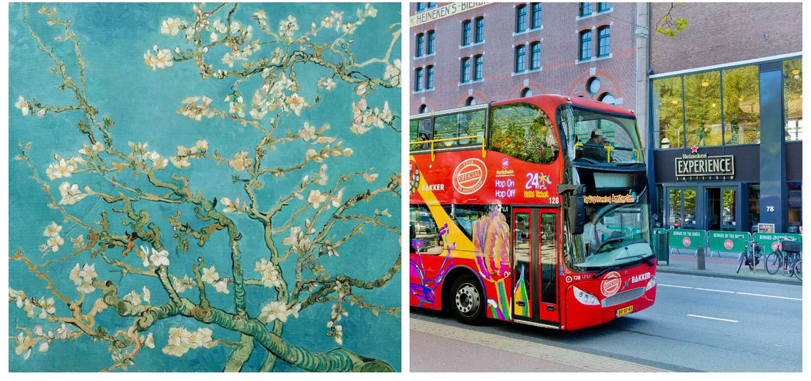 Hop on Hop off bus & boot 24 u. + Van Gogh Museum