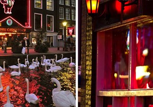 Casa Rosso + Red Light Secrets
