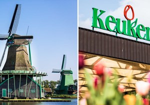 Keukenhof + Countryside & Windmills Tour + 1 hr Amsterdam Canal Cruise