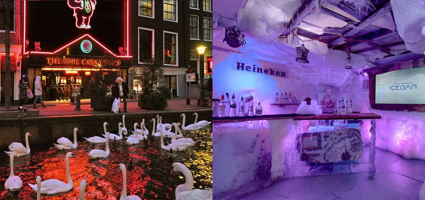 Xtracold Icebar + Casa Rosso including 2 drinks